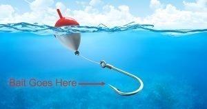 Fishing Bait Guide